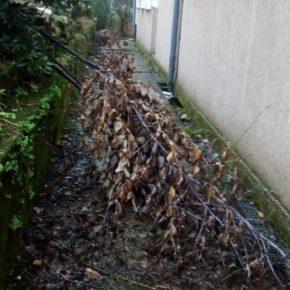 Cs Cambados solicita al ayuntamiento el acondicionamiento y la limpieza del centro cultural de Corvillón