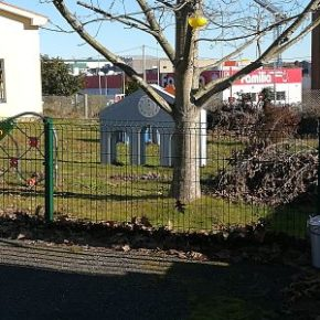 """Ciudadanos Oroso solicita al ayuntamiento la retirada de ramas y el desbroce en los alrededores de la escuela infantil """"A Ulloa"""""""