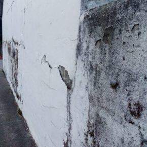 Desde Ciudadanos Cambados se alerta del mal estado de mantenimiento de la Casa de Cultura de Castrelo