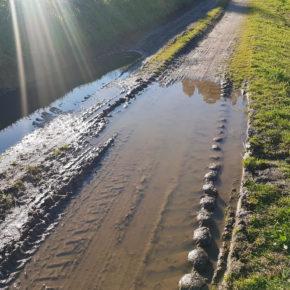Cs Silleda denuncia la falta de mantenimiento de las vias y caminos de la Parroquia de Cervaña
