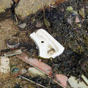 Ciudadanos pide soluciones para acabar con el foco de contaminación  medioambiental existente en A pasaxe