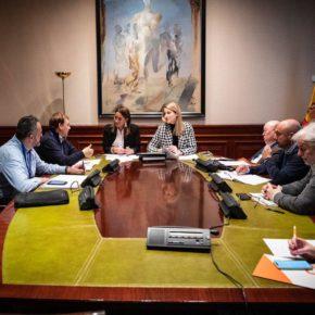 """Pino: """"El PSOE nos sigue mintiendo con el estatuto de electrointensivos"""""""